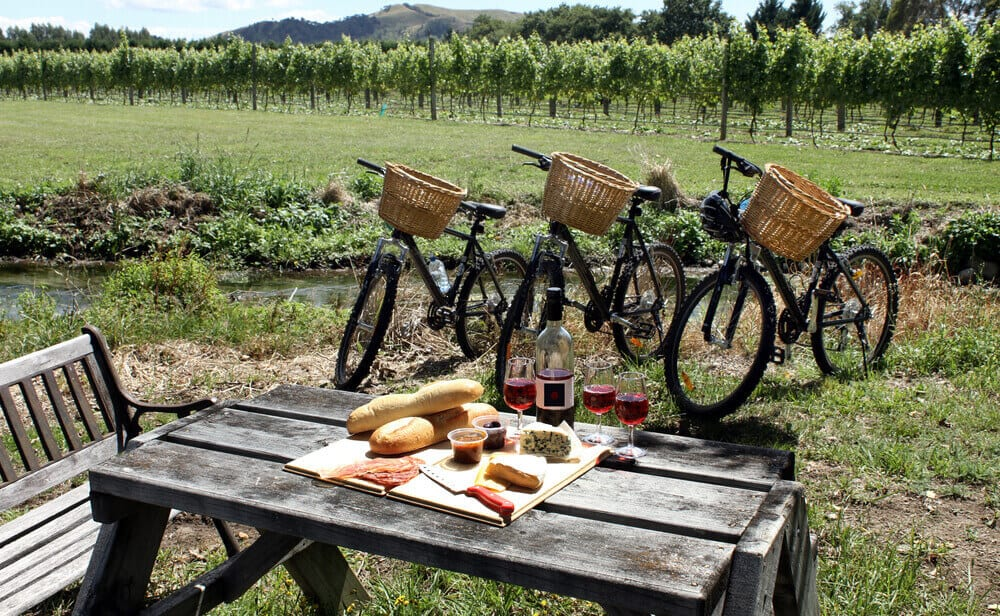 Wine Country bikes near vineyard and picnic table with food.